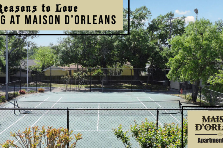 8 Reasons to Love Living at Maison D'Orleans